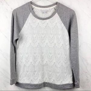 Adrienne Vittadini Cream Lace Gray Sweater, Size M